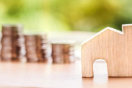 drevená maketa domu a mince