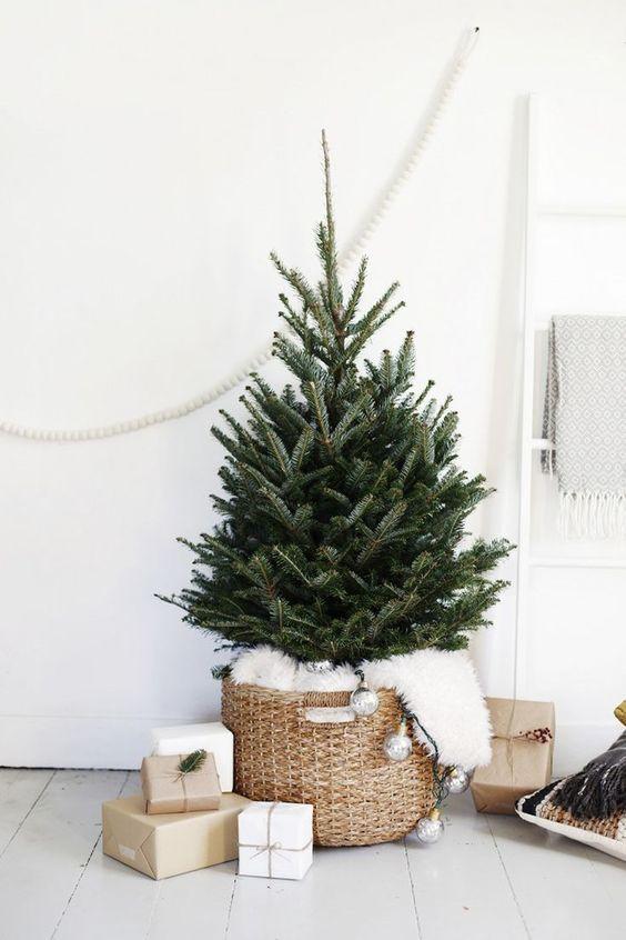Ekologický vianočný stromček